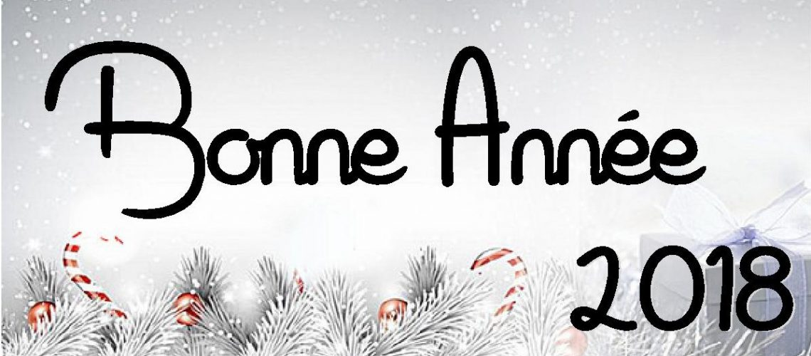 Le Maire, Jean André et le conseil municipal vous adressent leurs meilleurs vœux pour l'année 2018.