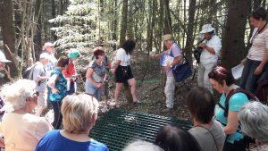 Visite des anciens puits de mine dans la forêt de Bethoncourt