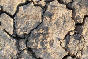 Sécheresse – des limitations de l'usage de l'eau sont prises par le préfet du Doubs