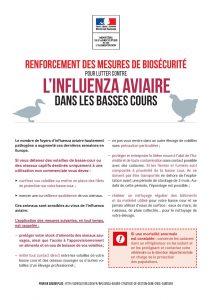 Passage au niveau élevé du risque influenza aviaire